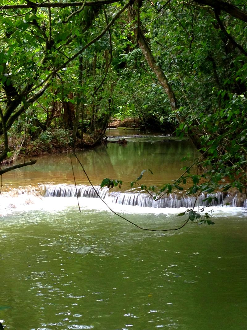 Eine pittoreske Tropenlandschaft zieht sich durch Gebiet rund um den Wasserfall