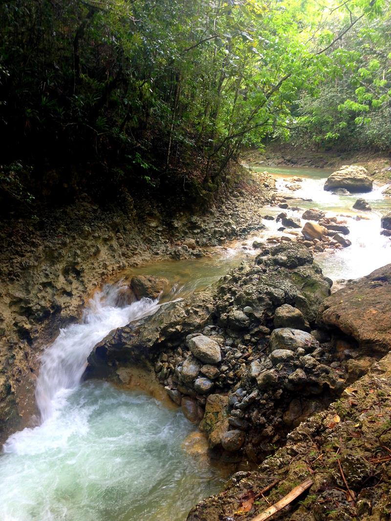 Pittoreske Landschaft rund um den Salto El Limon auf der Halbinsel Samana