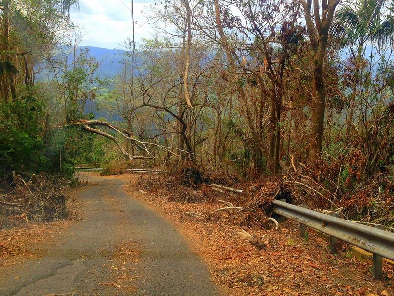 Hurrikan-Schäden bei Puerto Plata