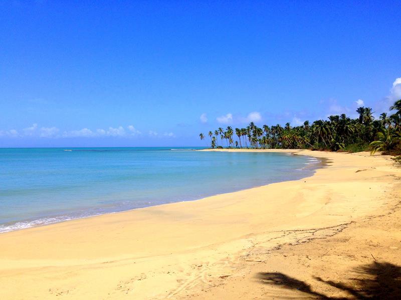 Der traumhafte Playa Esmeralda in der Dominikanischen Republik