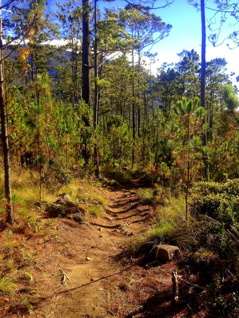 Wanderung auf den Pico Duarte, den höchsten Berg der Dominikanischen Republik