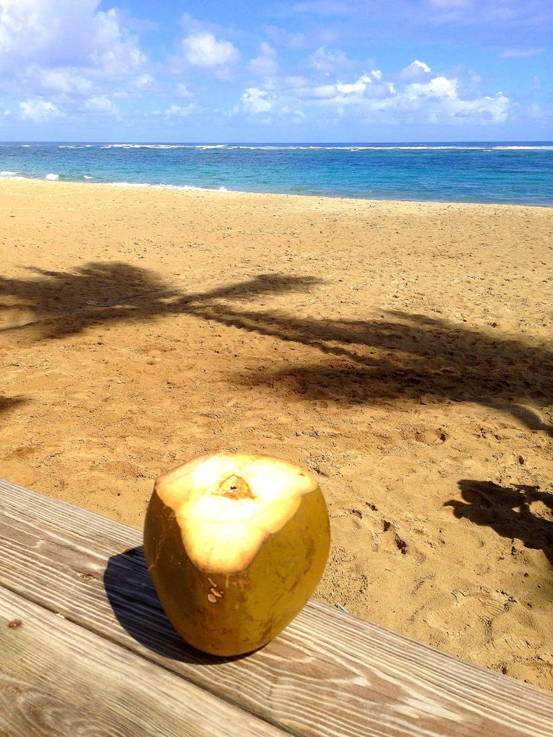 Der Kite Beach in Cabarete an der Nordküste der Dominikanischen Republik