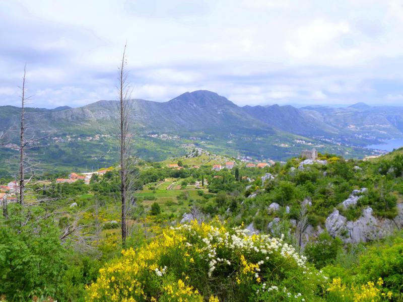 Dubrovnik kann auch grü