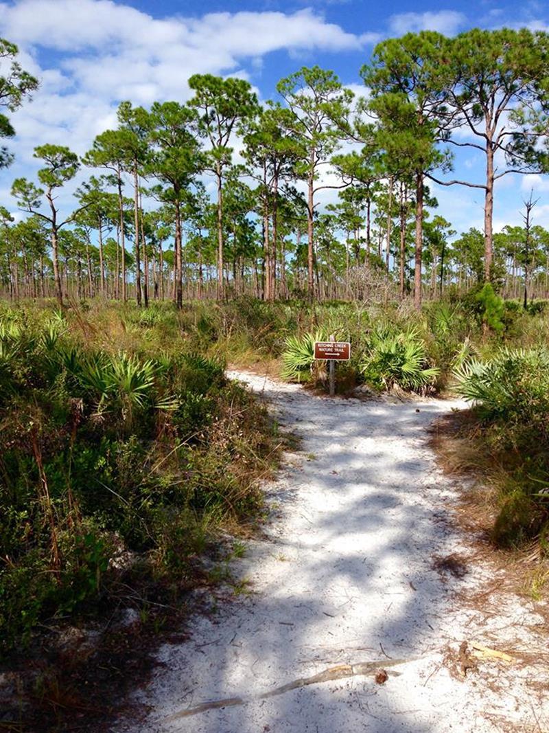 Der Jonathan Dickinson State Park in Florida zwischen Miami und Orlando