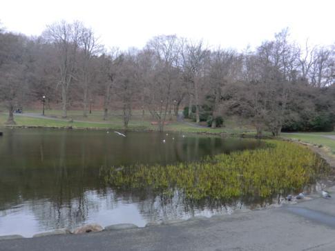 Kleiner See im Slottskogen, dem größten städtischen Park von Göteborg