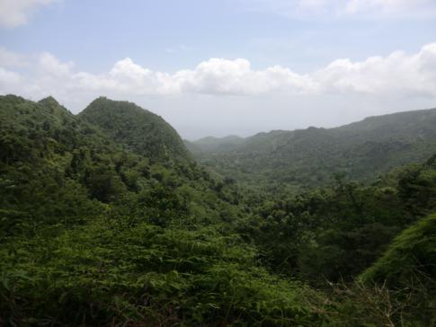 Blick vom Beausejour Lookout in Richtung Grenadas Westküste