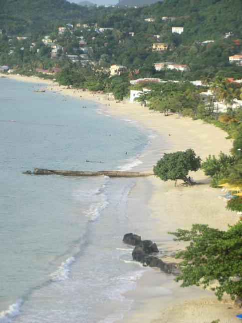 Der Ausblick vom Flamboyant Hotel auf die Grand Anse Bay