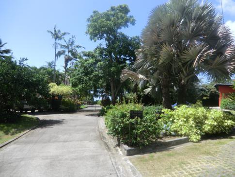 Die Außenanlage des La Sagesse Nature Resort