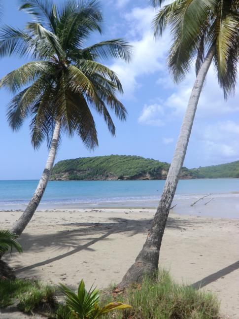 La Sagesse - eine wunderschöne Karibik-Bucht im Südosten von Grenada