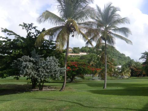 Weitläufige Grünanlagen im Grenada Grand Beach Resort