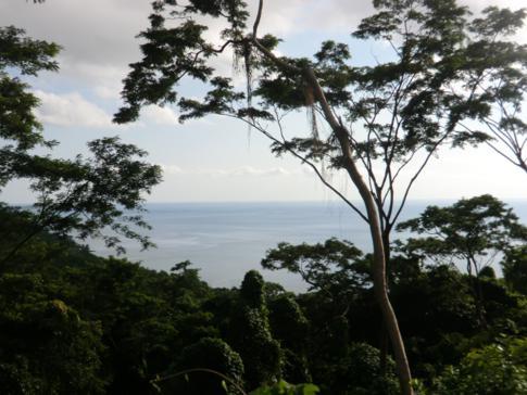 Ausblick während des Aufstiegs auf Grand Mal Bay und die Westküste von Grenada