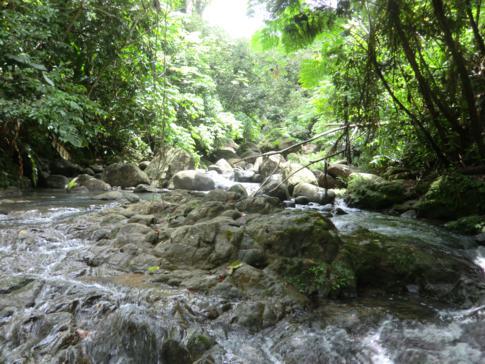 Das obere Flussbett vor den Seven Sister Falls