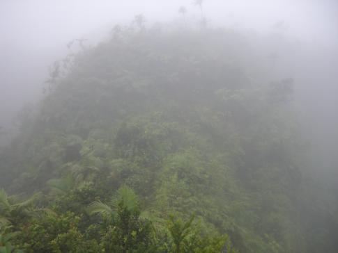 Die schwierige Bergflanke auf dem Weg vom Mount St. Catherine