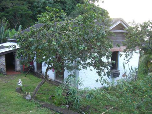 Das Haupthaus im Crayfish Bay Organic Estate