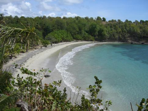 Blick auf den Strand direkt an der Cabier Ocean Lodge in Grenada