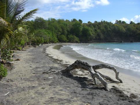 Der Strand an der Cabier Ocean Lodge