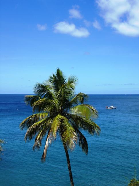 Traumhaftes Wetter für die Fahrradtour um die Insel