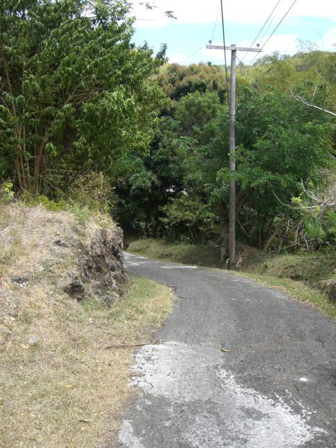 Schwierige Anstiege und Abfahrten, wie hier am Mount Alexander
