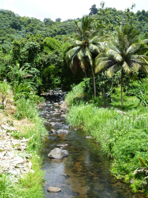 Der Balthazar River in Birch Grove, Grenada