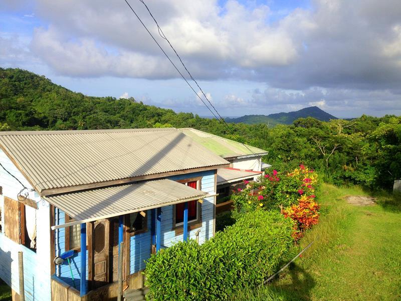 Unberührte und grüne Natur im Norden von Grenada