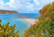 Grenada Sugarloaf Island
