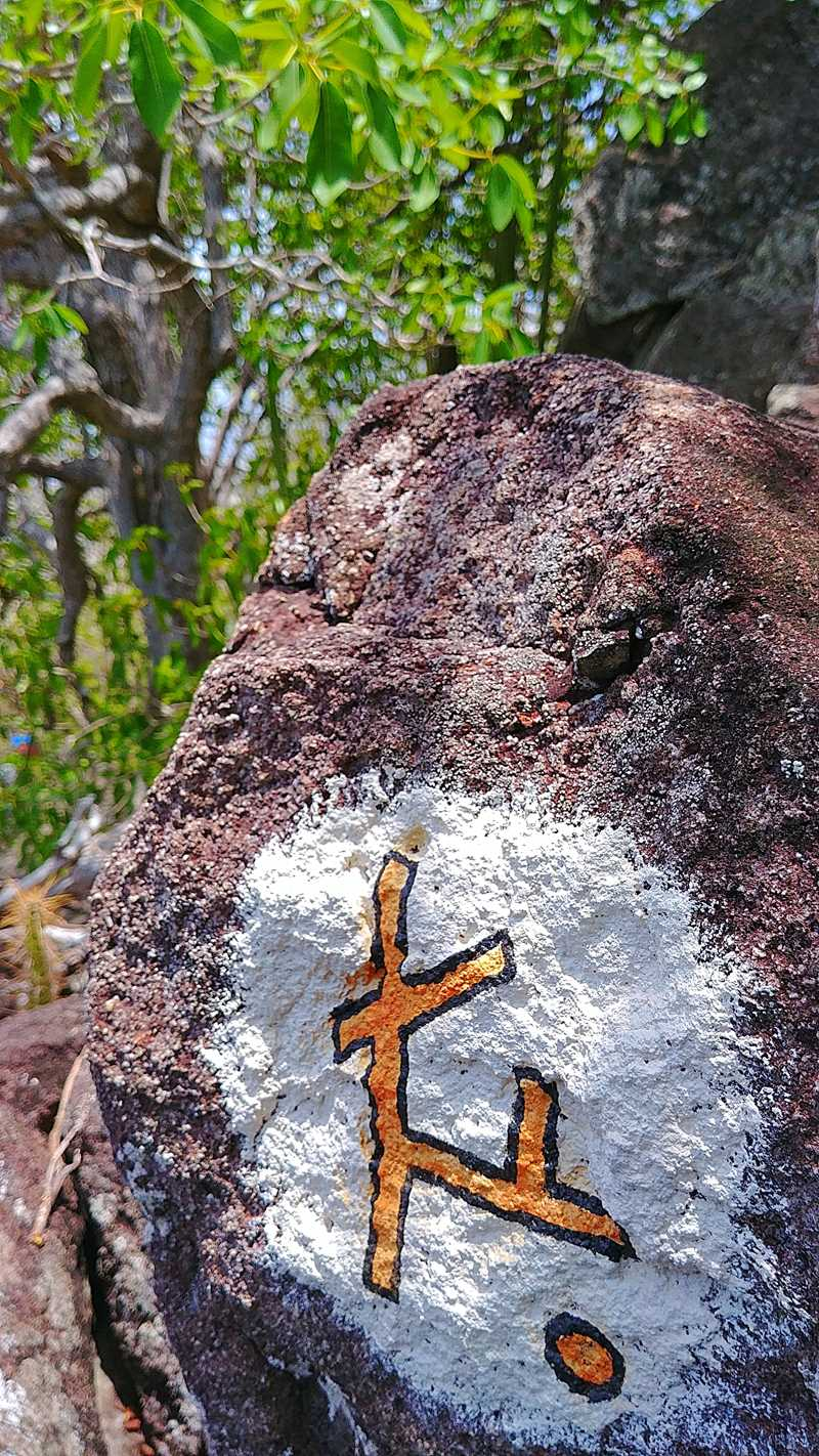 Kleine Wanderung zur Spitze von Sugar Loaf Island