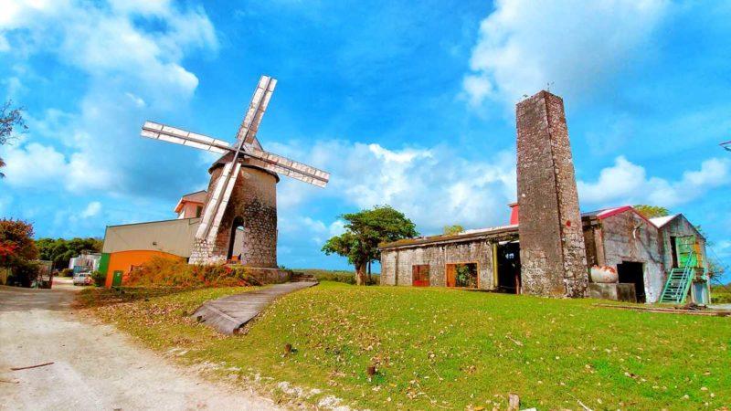 Die Bellevue-Destillerie auf Marie-Galante, einer kleinen Insel in der Karibik
