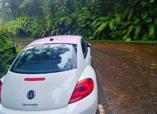 Reisebericht Guadeloupe