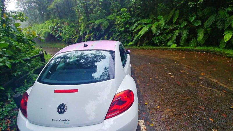 Mit dem Mietwagen über die Karibik-Insel Guadeloupe