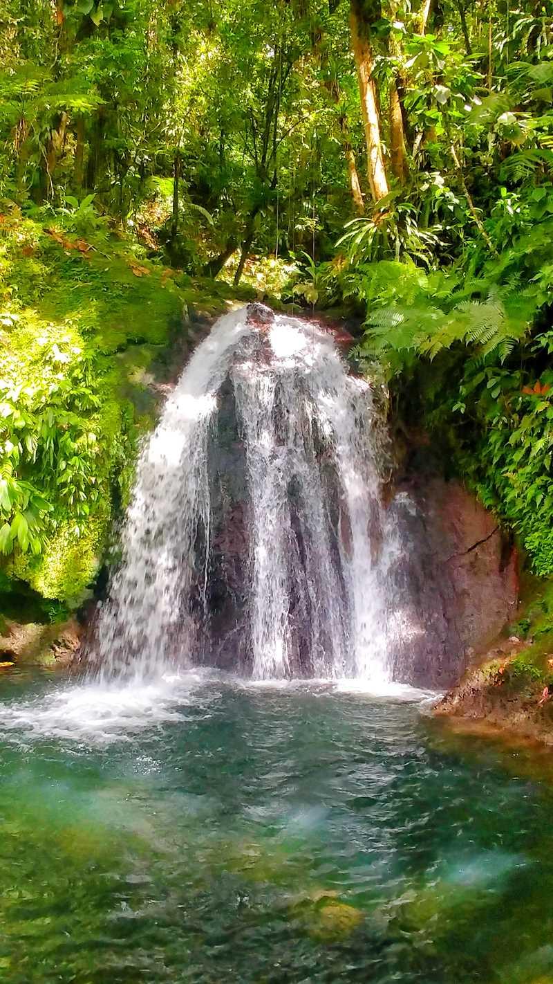Der Wasserfall Saut de Ecrevisse auf der Route du Traverse in Basse-Terre, Guadeloupe