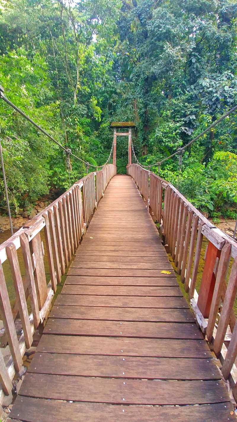 Wanderung nahe der Route du Traverse in Basse-Terre, Guadeloupe