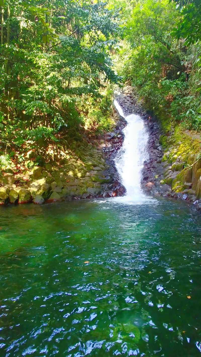 Wanderung zum Wasserfall Cascade Paradis in der Nähe von Basse-Terre auf Guadeloupe