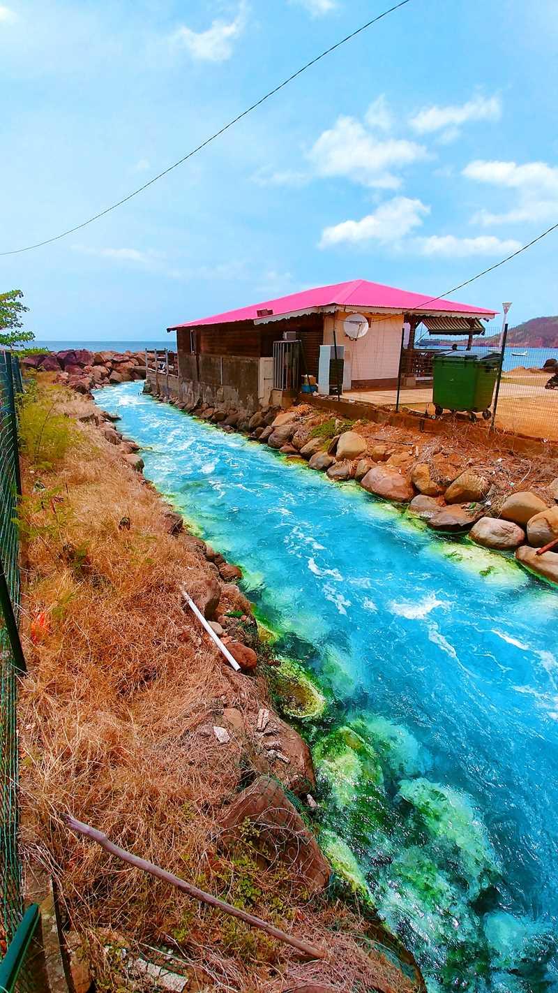 Heisse Quellen auf Guadeloupe im Ort Bouillante