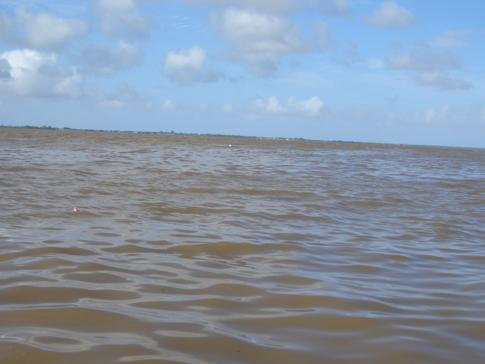 Das riesige Delta des Essequibo River
