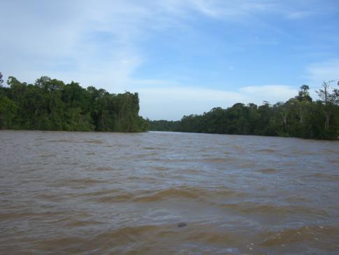 Seitenstrom des mächtigen Essequibo Rivers auf der Fahrt zum Bartica Airport
