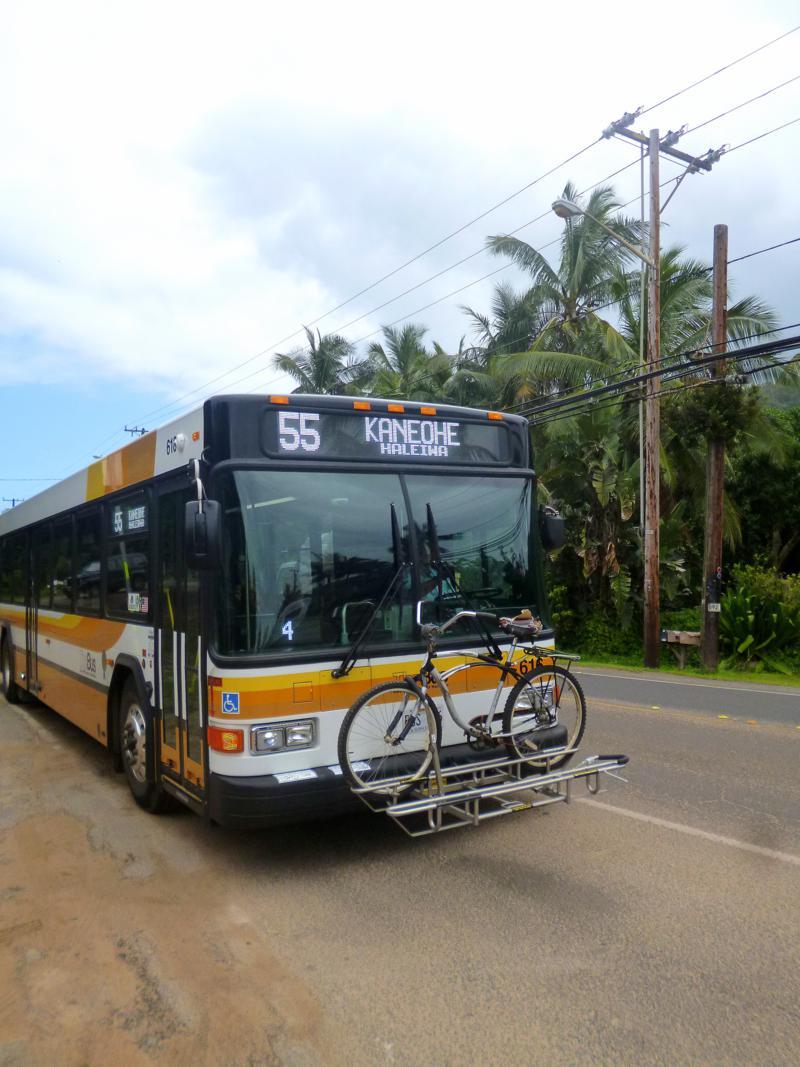 TheBus, das wichtigste Verkehrsmittel auf Hawaii für Jeden, der keinen Mietwagen hat