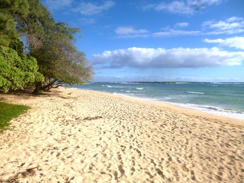 Der Strand im Malaekahana State Park auf Oahu