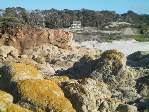 Der 17 Mile Drive in Pebble Beach: Bird Rock Area