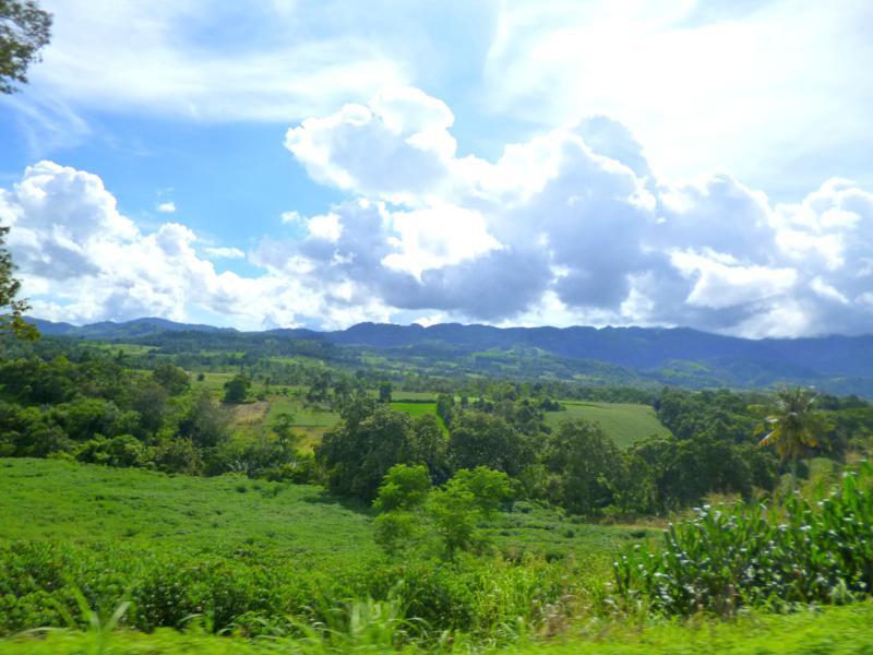 Traumhaft grüne Landschaften auf Sumatra