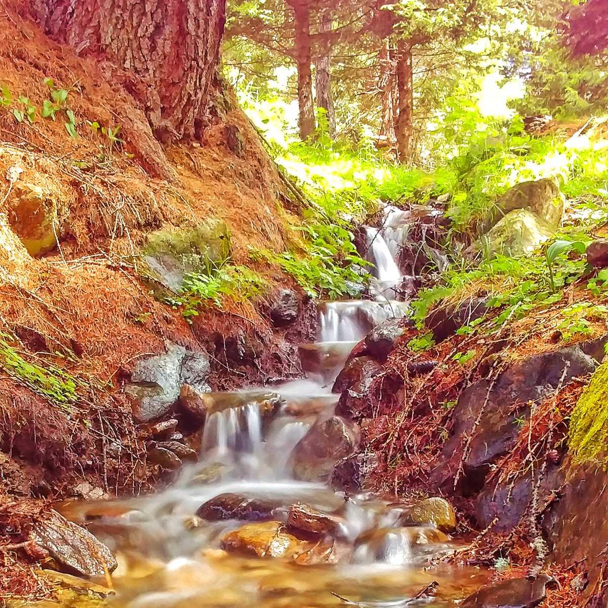 Wasserfälle überall im Val di Rabbi im Trentino