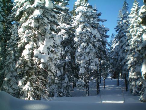 Ordentlicher Schnee in Tahoe City am Lake Tahoe