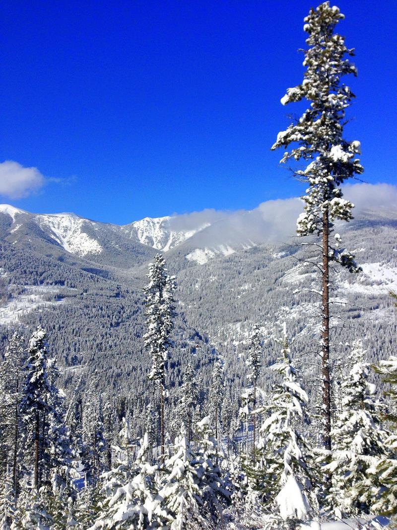 Tolle Winterlandschaft in Panorama in Kanada