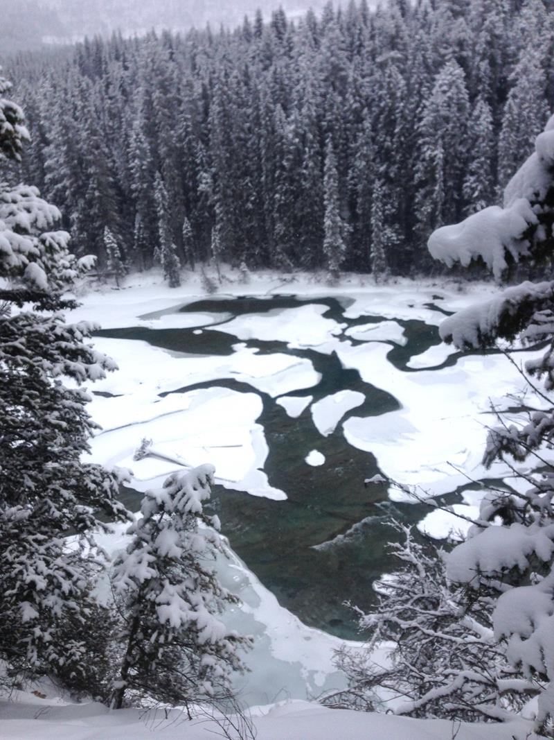 Der Kicking Horse River im Yoho National Park