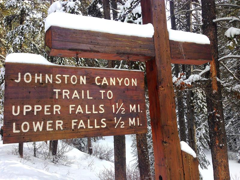 Johnston Canyon – beeindruckende Schlucht im Sommer und im Winter