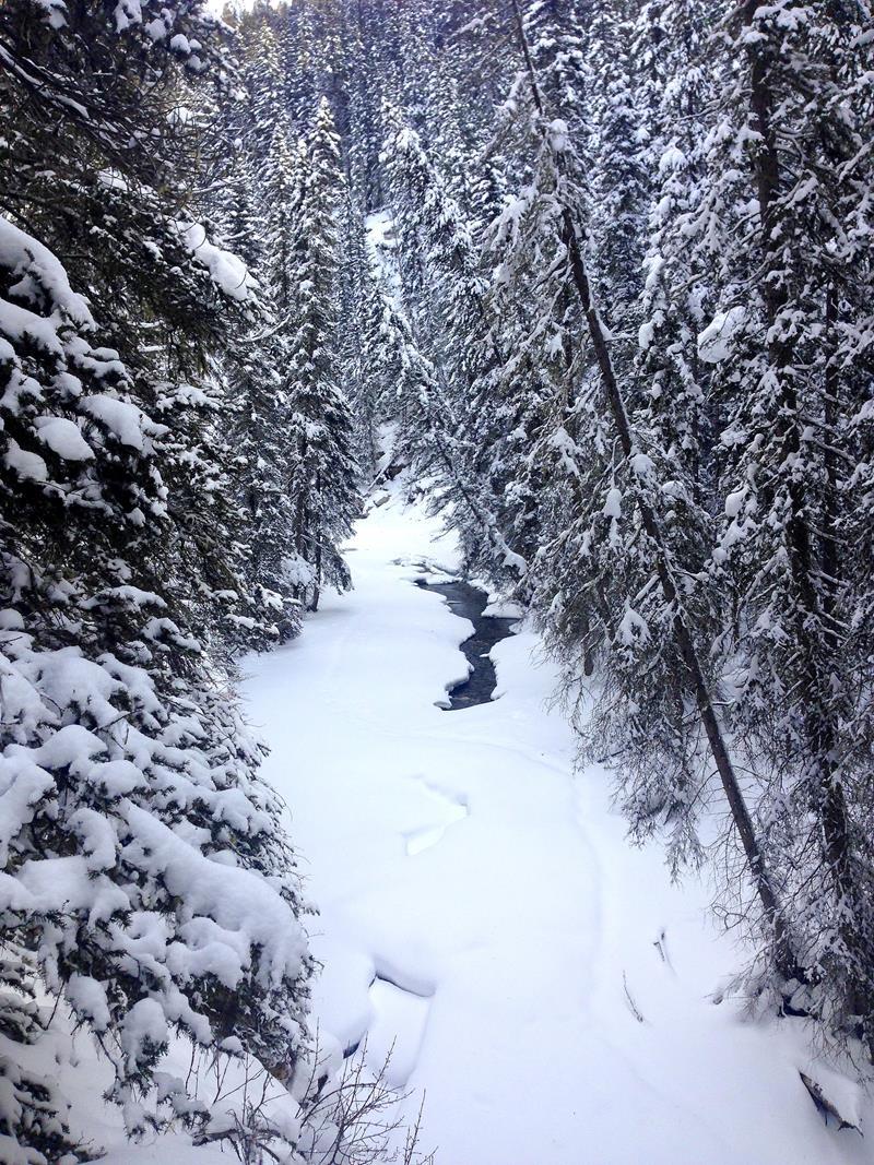 Der Johnston Canyon im Banff National Park in Alberta, Kanada