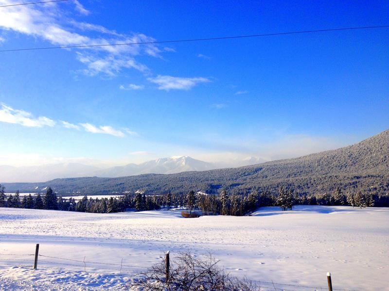 Traumhafte Winterlandschaft in den Rocky Mountains