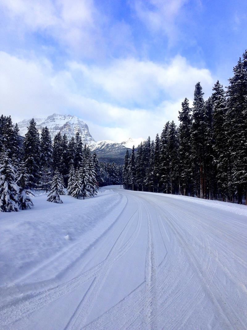 Der Bow Valley Parkway im Banff National Park