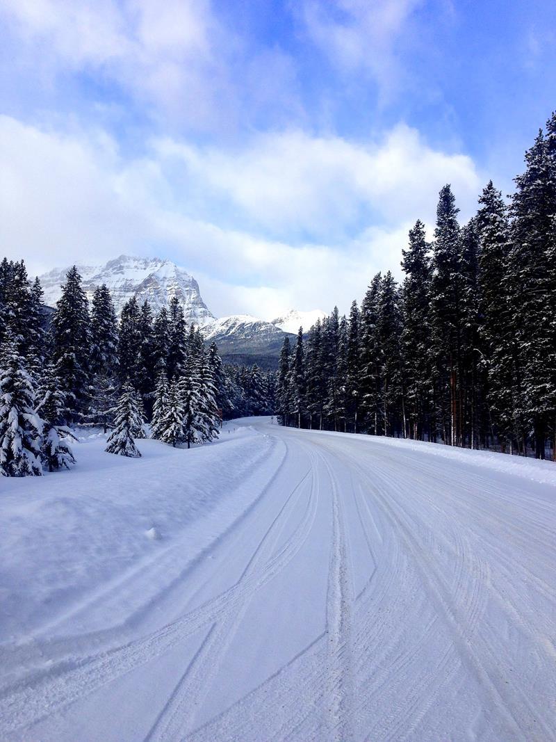 Der Bow Valley Parkway im Banff National Park