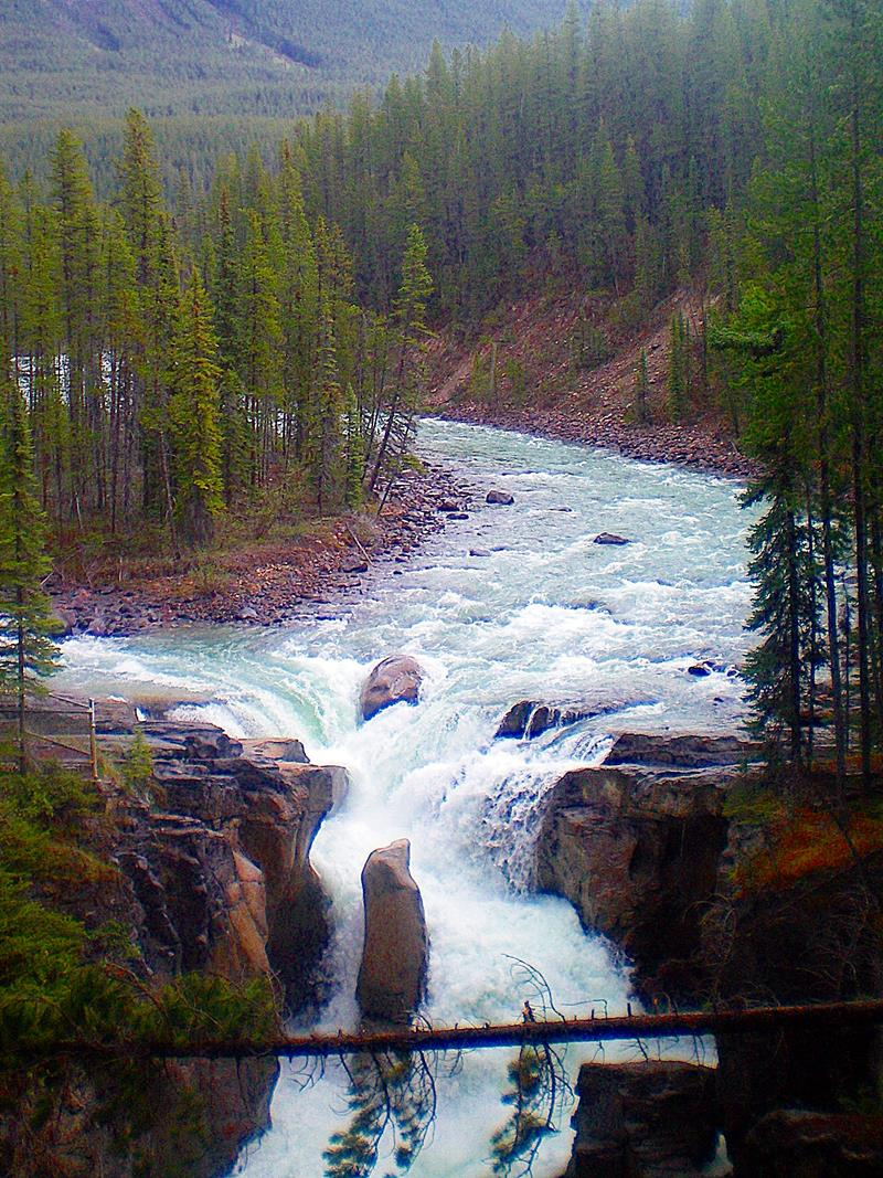 Die Sunwapta Falls, ein weiterer Stopp entlang des Icefields Parkway in Kanada
