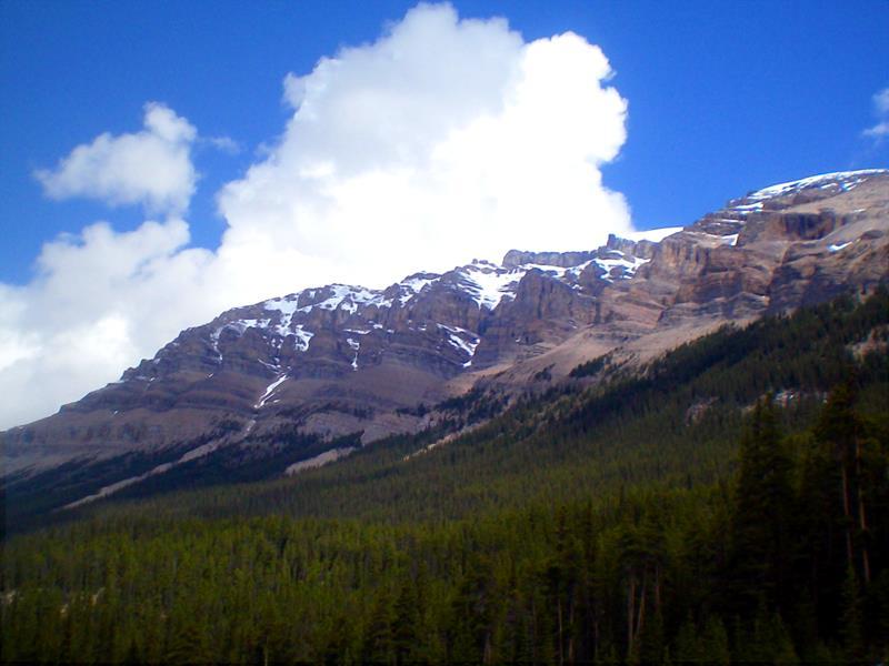 Aussichtspunkt in der Nähe des Stutfield Glacier am Icefields Parkway